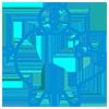 SMSF-Advice-Icon